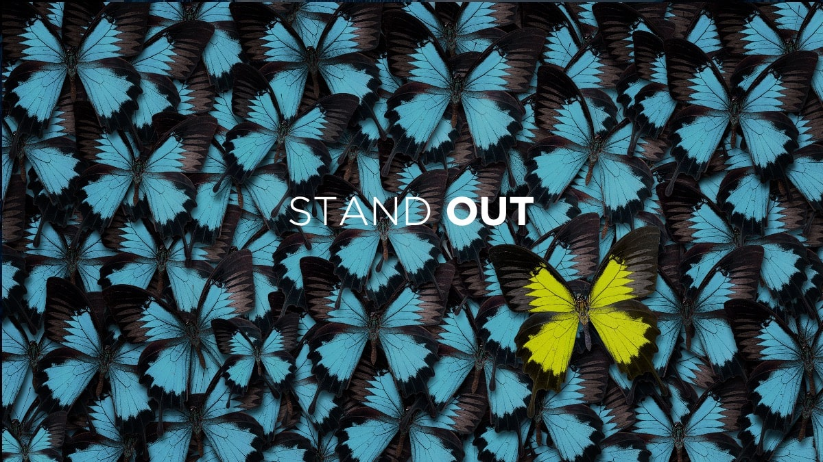 stand out in b2b sales